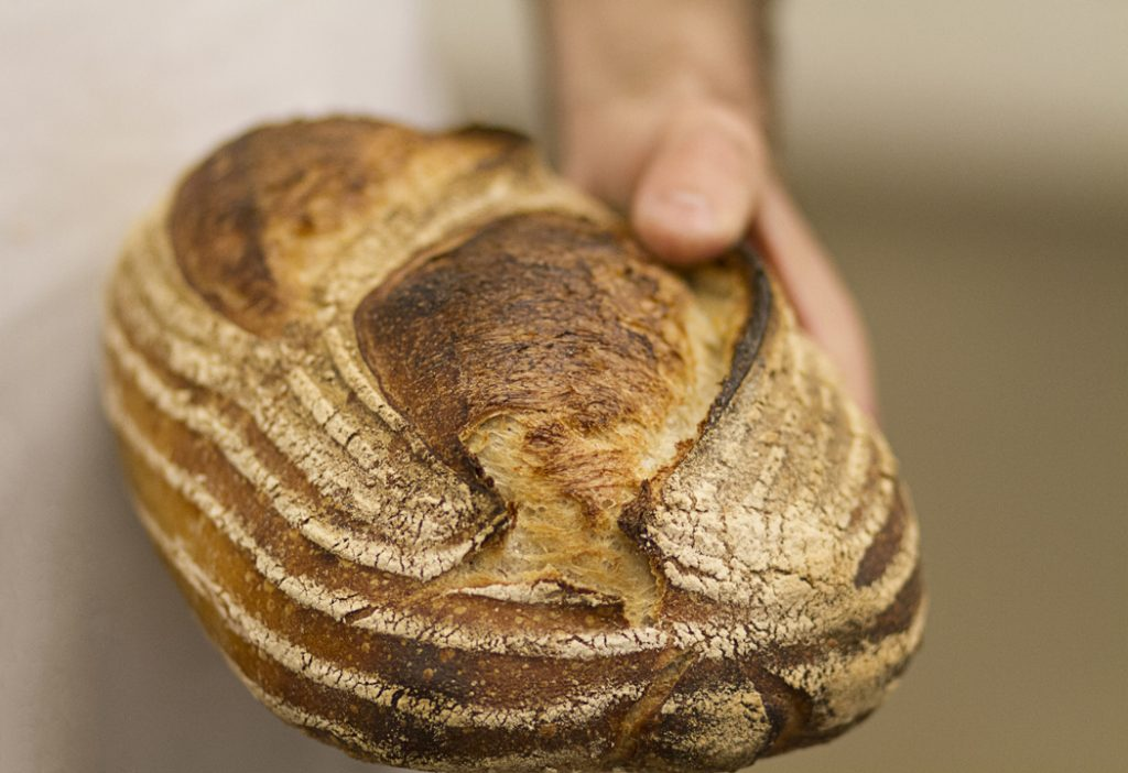 bakers_levain_small